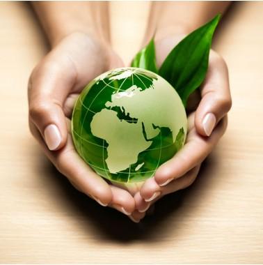 ¿Qué tipo de bolsa es la que tiene menos impacto en el medio ambiente?